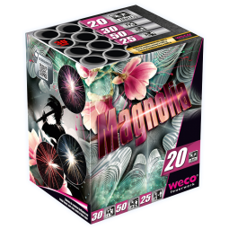 Magnolia, 20 Schuss Batterie